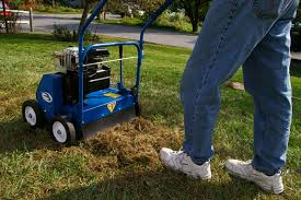 Dethatching (Picture from safe lawns.org)
