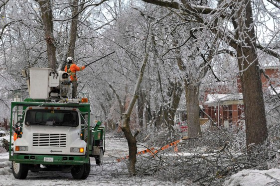 BRAMPTON ICE STORM CLEANUP