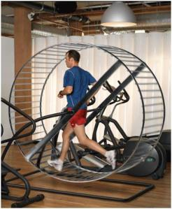 gym-rat+treadmill+wheel